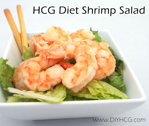 Grilled shrimp salad for HCG P2... on of my fav HCG recipes!